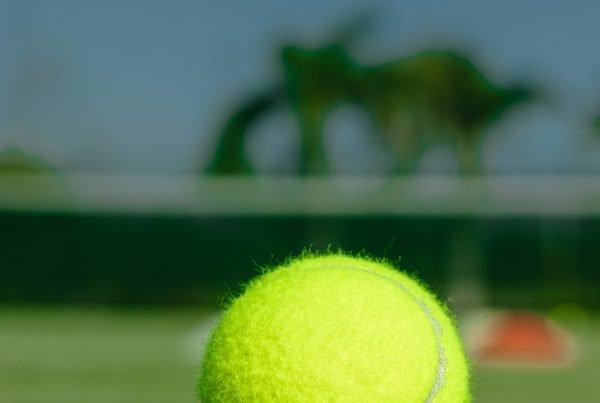 Tid til sport og fritid